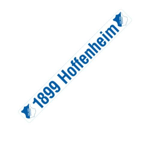 Autoaufkleber Schriftzug gross TSG 1899 Hoffenheim
